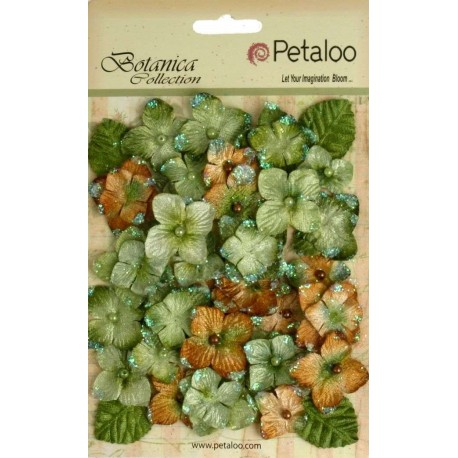 PETALOO. Velvet Hydrangeas