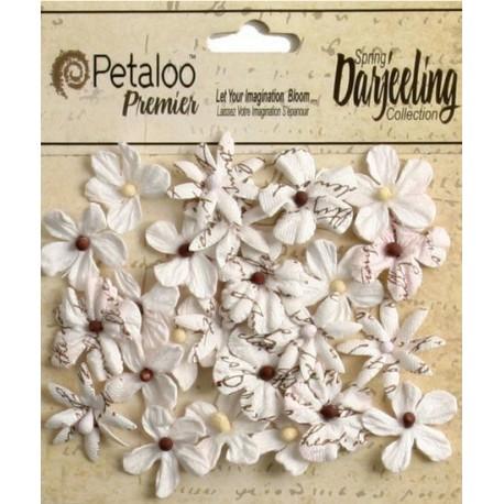 PETALOO. Wild Blossom