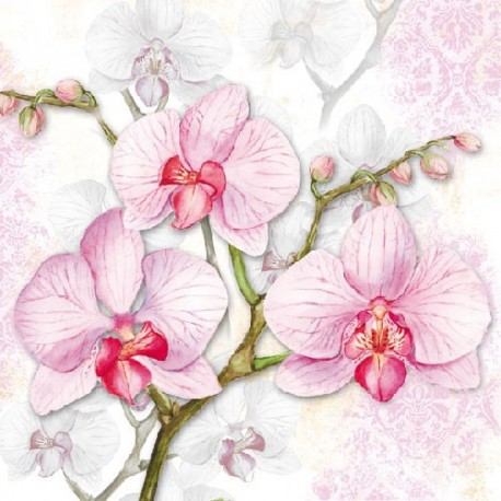 SERVILLETAS- Orchids Lilac