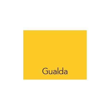 Cartulina 50x60 IRIS Gualda