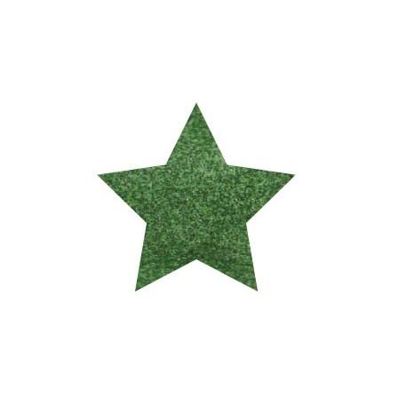 GLITTER POWDER PEN Hologr. Verde