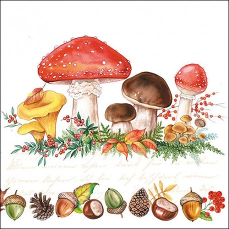 SERVILLETAS- Mushrooms