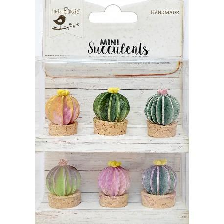 Mini Suculents - BARREL CACTUS