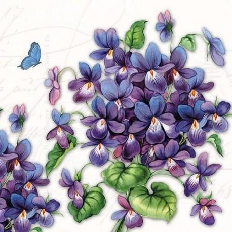 SERVILLETAS-Viola