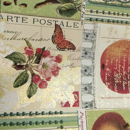 2 Papeles ROSSI Fruit 50x70