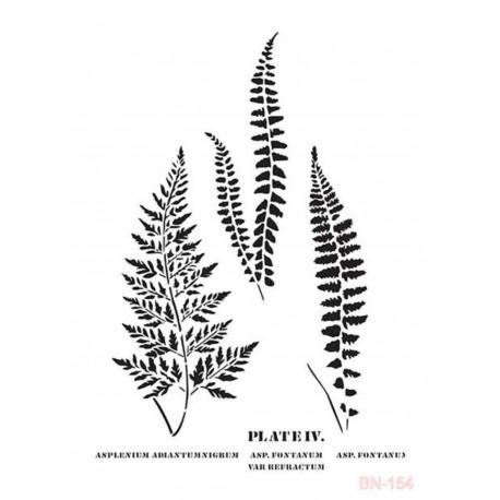 Stencil PLATE IV Cadence
