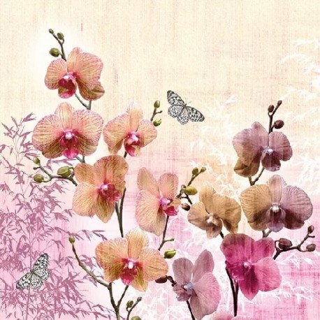 SERVILLETAS- Orchids Orient