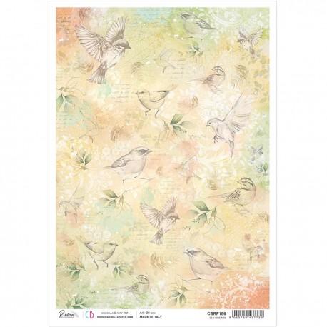Rice Paper A4 Les oiseaux