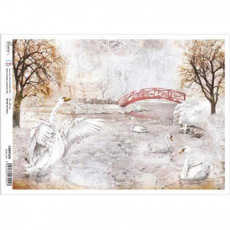Rice Paper A4 Swan Lake