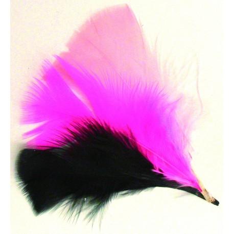 Plumas Rosa-Negra