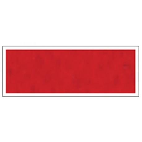 Arena Rojo Silvia