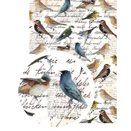Washi-Tape A4 pájaros